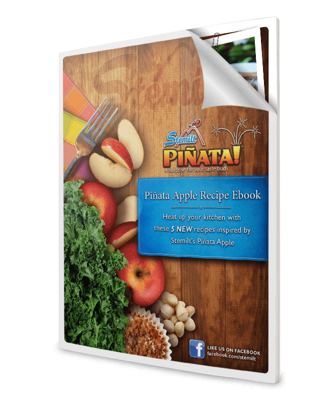 Pinata_eBook_featured